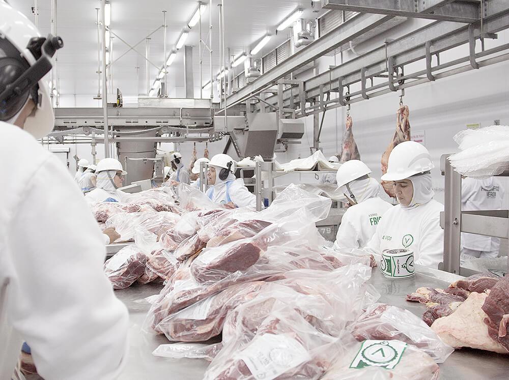 frigorifico-verdi-carnes-pouso-redondo-sc-embalagem-primaria-cortes-1