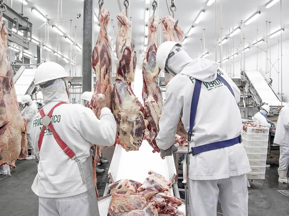 frigorifico-verdi-carnes-pouso-redondo-sc-linha-desossa-area-3