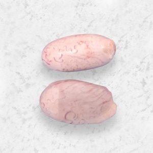 frigorifico-verdi-carnes-pouso-redondo-sc-corte-verdi-testiculos