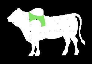 frigorifico-verdi-carnes-pouso-redondo-sc-local-corte-acem