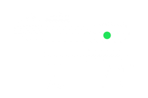 frigorifico-verdi-carnes-pouso-redondo-sc-local-corte-alcatra-aranha