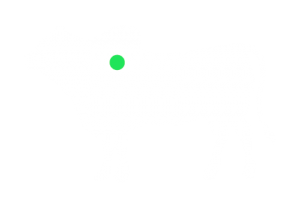 frigorifico-verdi-carnes-pouso-redondo-sc-local-corte-aorta-em-tubos