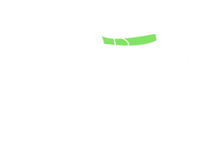 frigorifico-verdi-carnes-pouso-redondo-sc-local-corte-bananinha