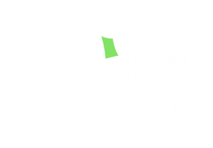 frigorifico-verdi-carnes-pouso-redondo-sc-local-corte-capa-do-contra-file