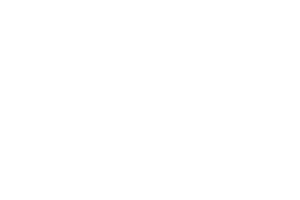 frigorifico-verdi-carnes-pouso-redondo-sc-local-corte-carne-salgada-cubos