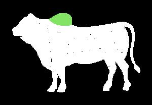 frigorifico-verdi-carnes-pouso-redondo-sc-local-corte-cupim