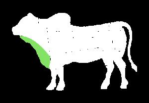frigorifico-verdi-carnes-pouso-redondo-sc-local-corte-granito