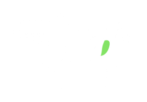 frigorifico-verdi-carnes-pouso-redondo-sc-local-corte-maminha-da-alcatra