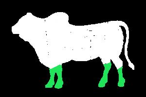 frigorifico-verdi-carnes-pouso-redondo-sc-local-corte-tendao-curto