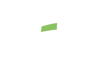 frigorifico-verdi-carnes-pouso-redondo-sc-local-corte-verdi-costela-janela