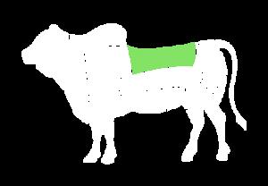 frigorifico-verdi-carnes-pouso-redondo-sc-local-corte-verdi-file-simples-serrado