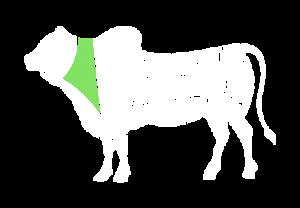 frigorifico-verdi-carnes-pouso-redondo-sc-local-corte-verdi-lombo-com-peito