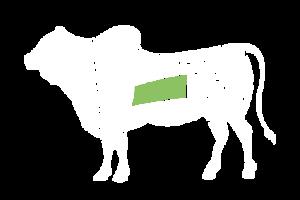 frigorifico-verdi-carnes-pouso-redondo-sc-local-corte-verdi-matambre