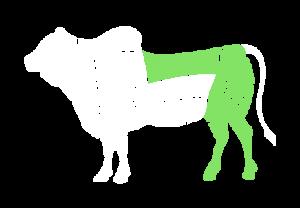 frigorifico-verdi-carnes-pouso-redondo-sc-local-corte-verdi-serrote-traseiro
