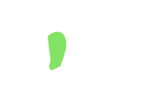 frigorifico-verdi-carnes-pouso-redondo-sc-local-corte-coracao-da-paleta-angus