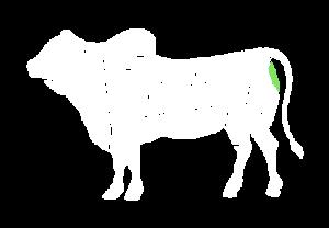 frigorifico-verdi-carnes-pouso-redondo-sc-local-corte-lagarto-angus