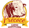 frigorifico-verdi-carnes-pouso-redondo-sc-logo-precoce